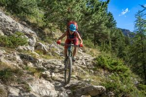 TRANSPROVENCE2020_119
