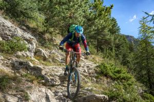 TRANSPROVENCE2020_120
