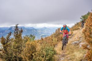 TRANSPROVENCE2020_194