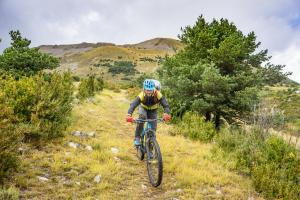 TRANSPROVENCE2020_238