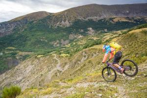 TRANSPROVENCE2020_244